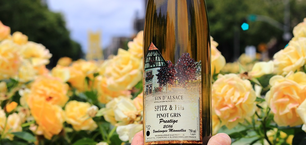 The Sublime Wine from Alsace